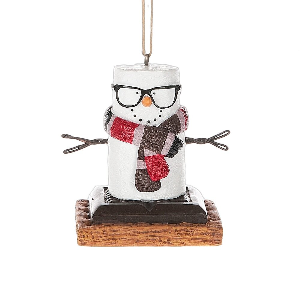 The Holiday Aisle Specialty S'mores Hipster Ornament ...