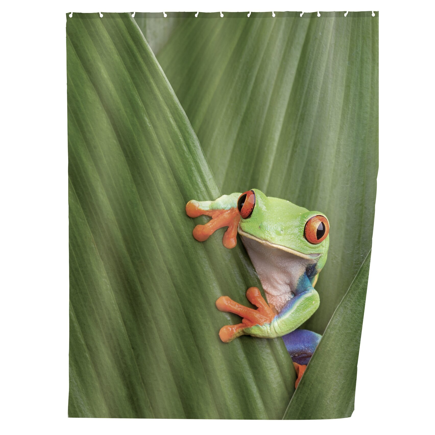 Frog Shower Curtain Rings