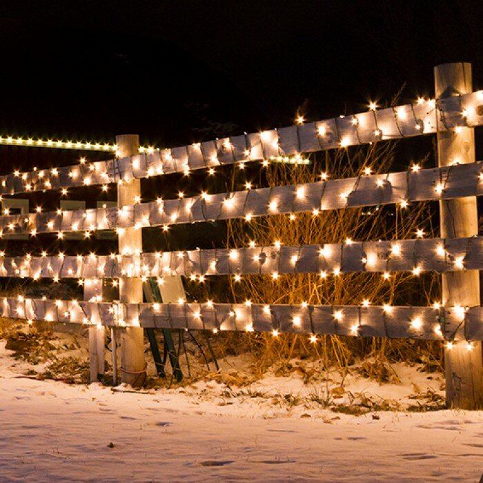 String Christmas Lights From Top Or Bottom : Touch of ECO Liteup 50 Solar String Lights & Reviews Wayfair