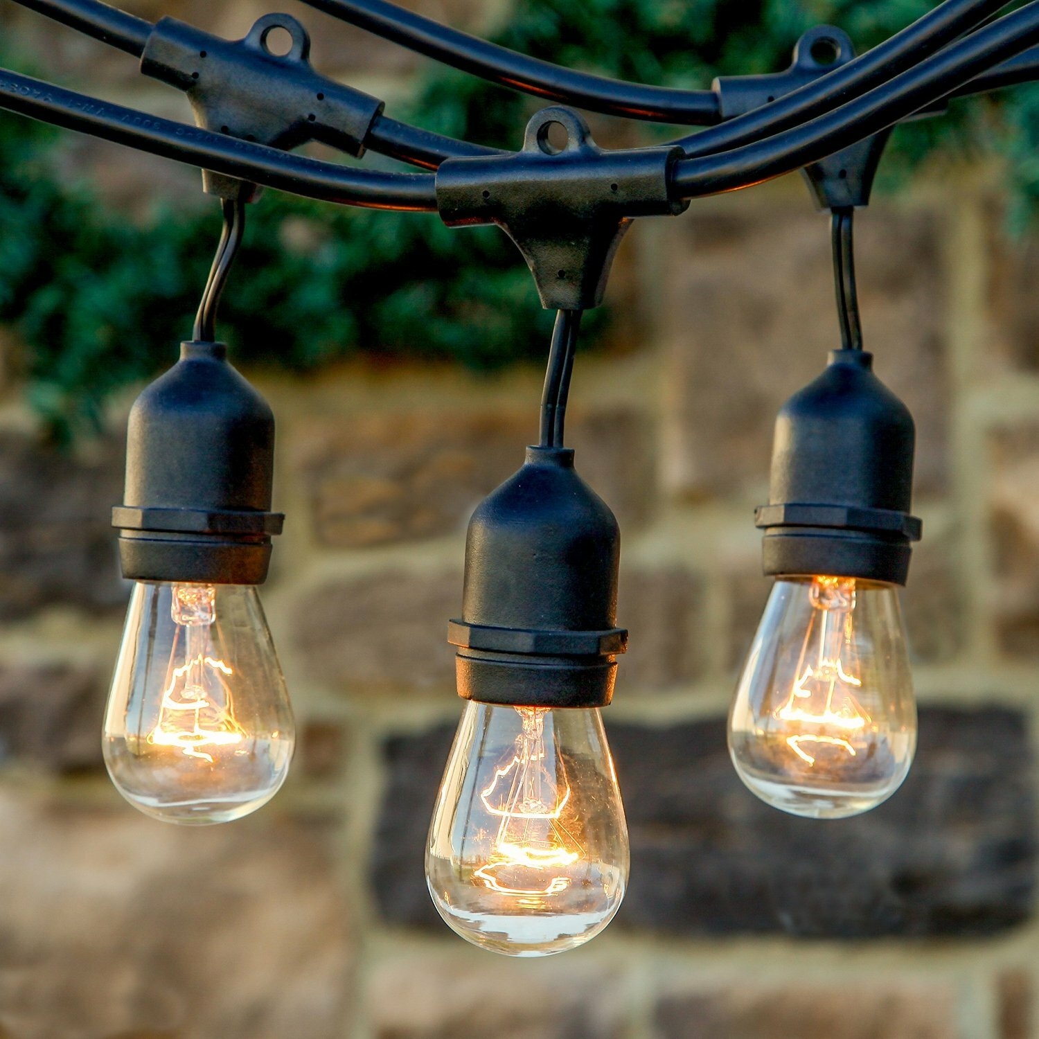 String Lights Review : Brightech Ambience Pro 15-Light 48 ft. Globe String Lights & Reviews Wayfair