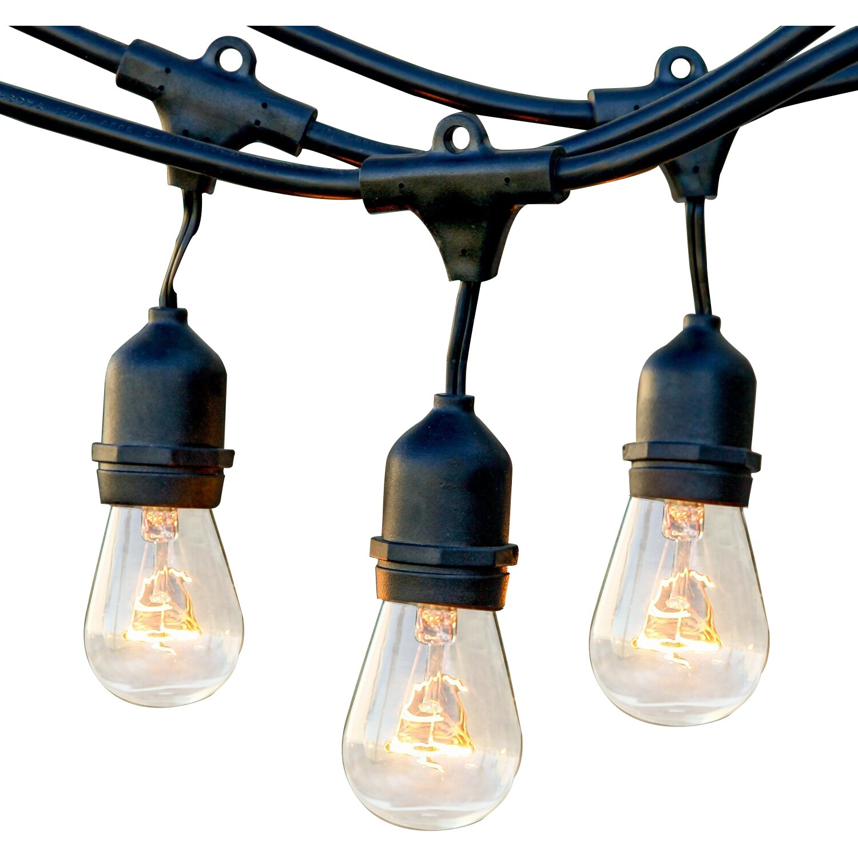 Brightech Ambience Pro 15-Light 48 ft. Globe String Lights & Reviews Wayfair