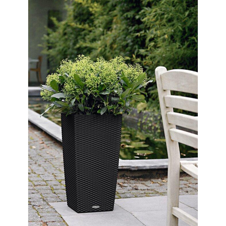Lechuza Cubico Cottage Self Watering Square Pot Planter Reviews Wayfair Uk