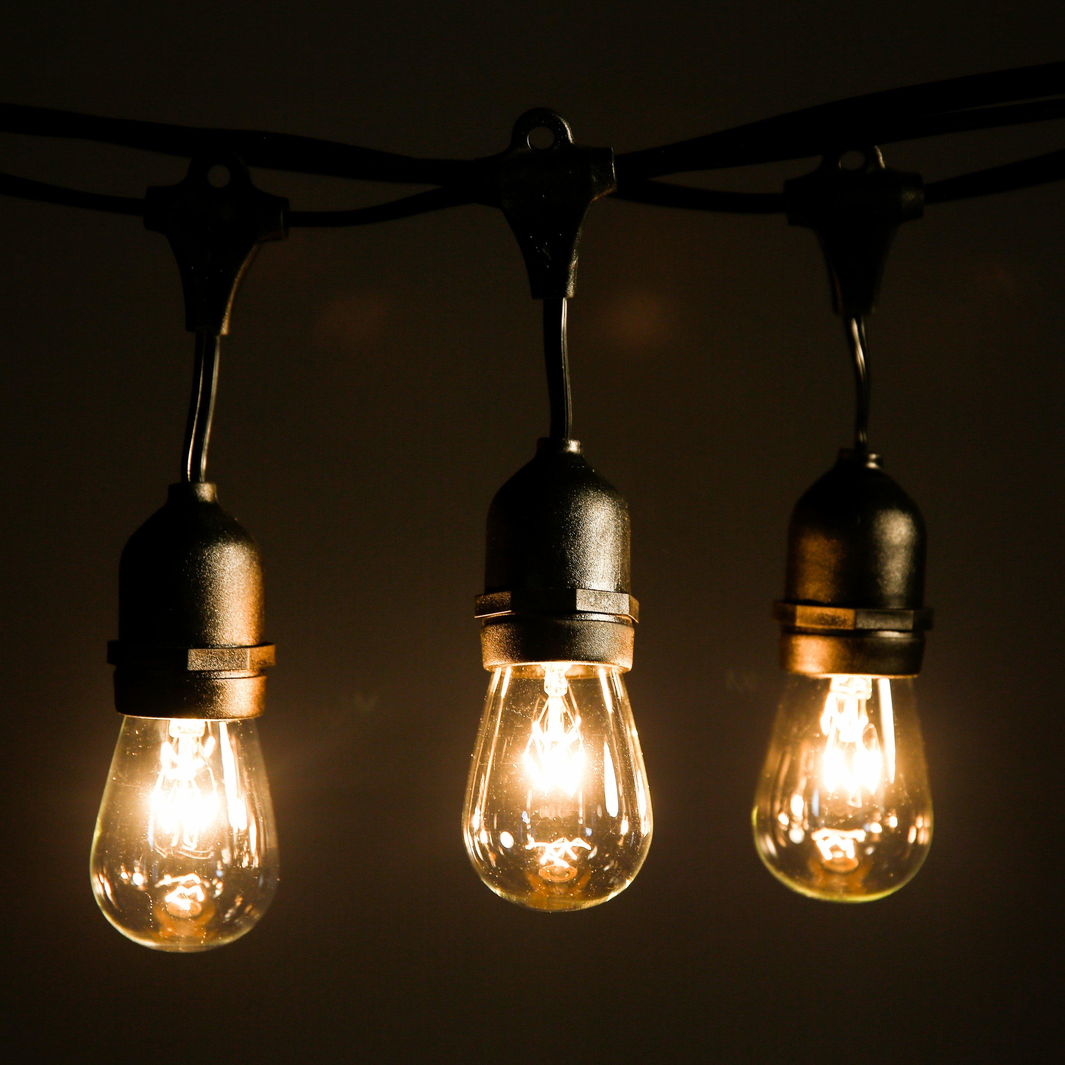 Globe Lantern String Lights : HometownEvolutionInc 50-Light Globe String Lights & Reviews Wayfair