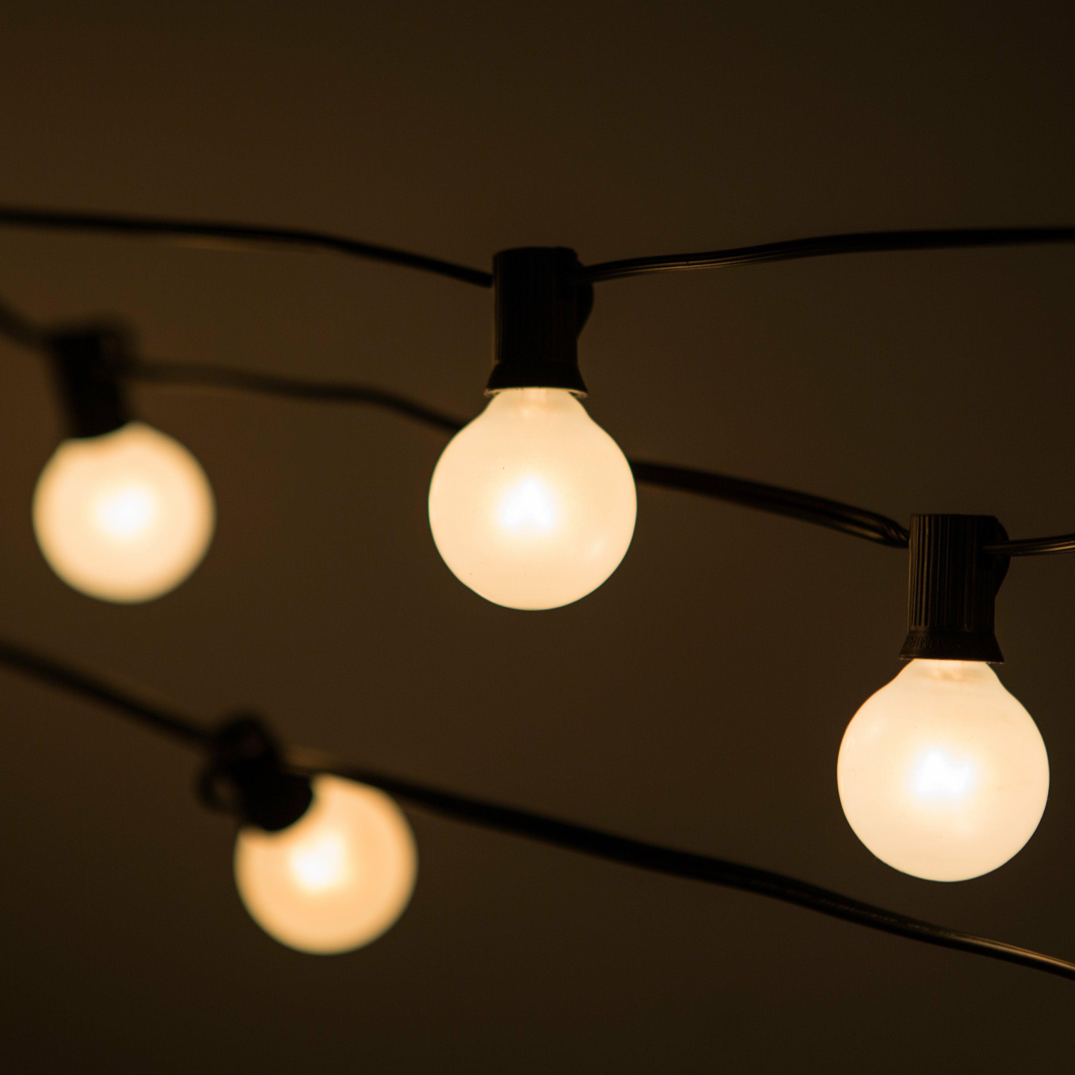 HometownEvolutionInc 50-Light Globe String Lights & Reviews Wayfair