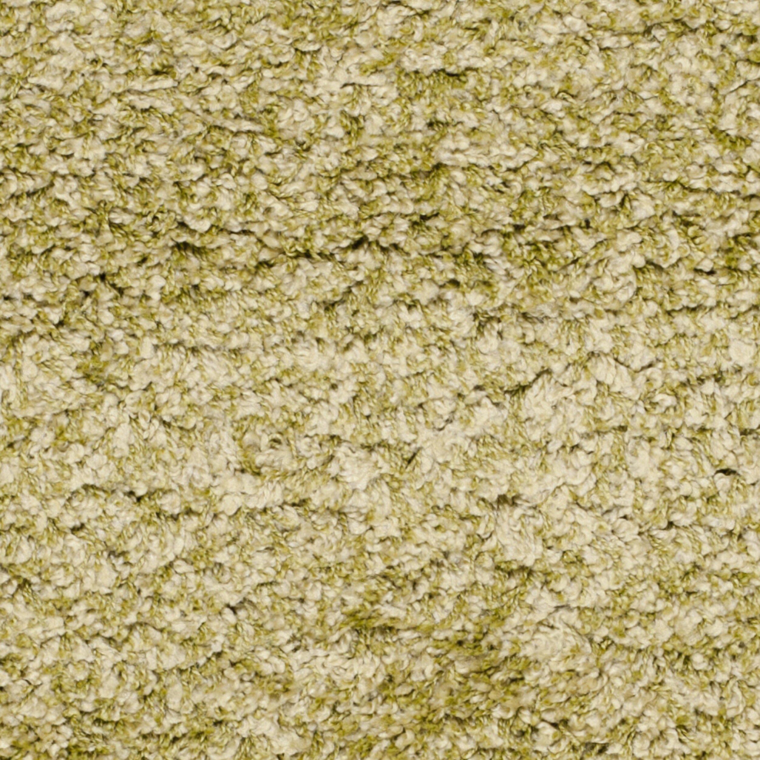 Green Rugs Next: Safavieh Green Shag Area Rug & Reviews