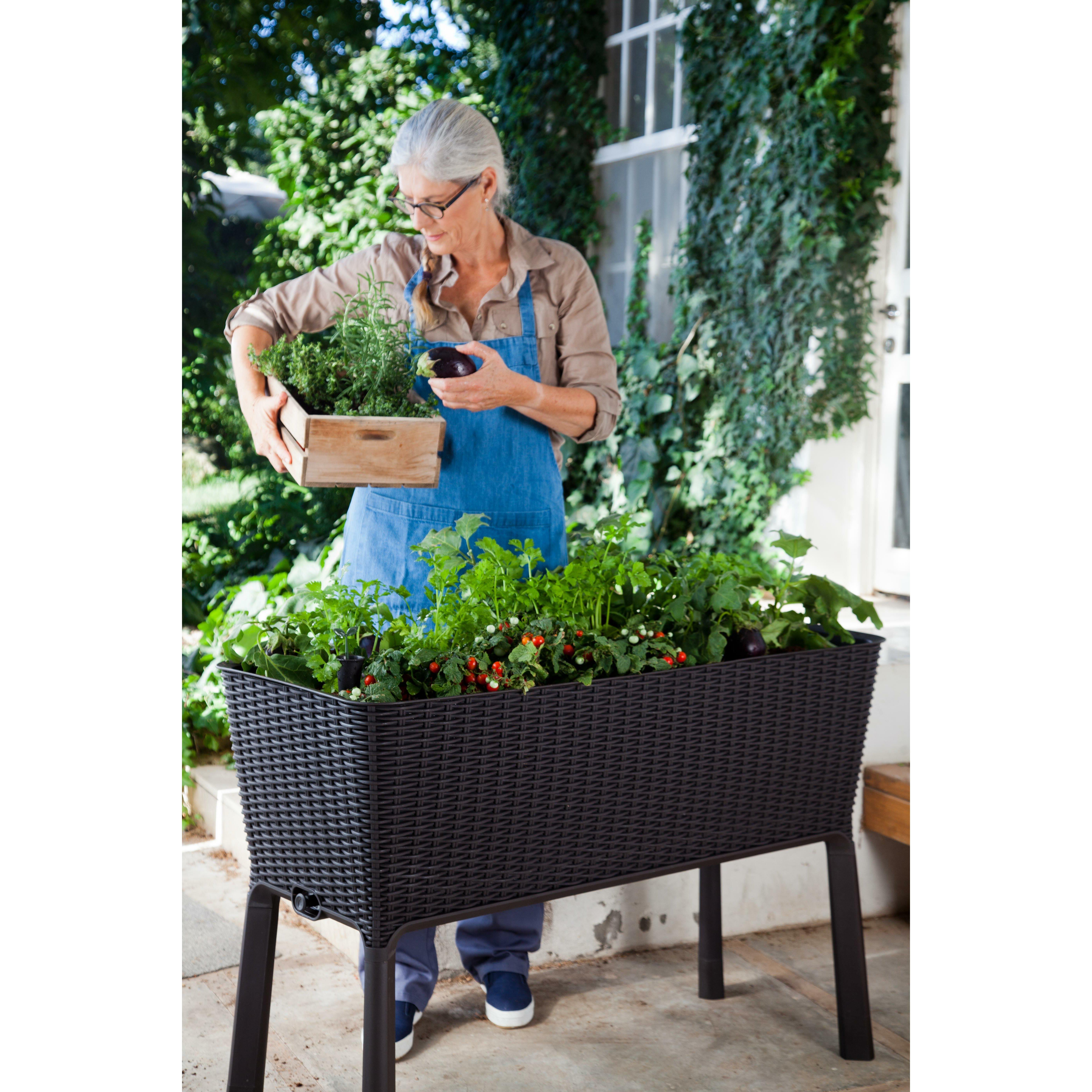 keter easy grow rectangular raised garden amp reviews wayfair