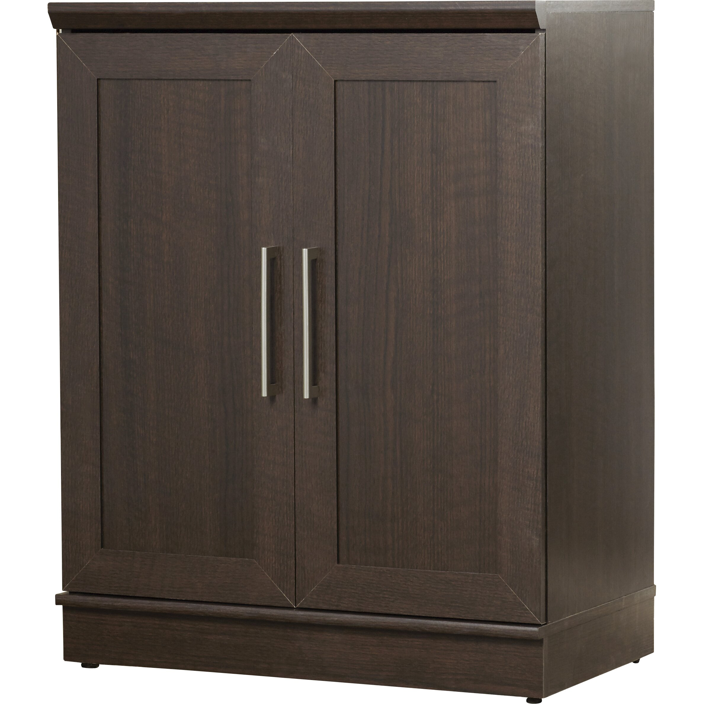Sauder homeplus 2 door storage cabinet reviews wayfair for 1 door storage cabinet