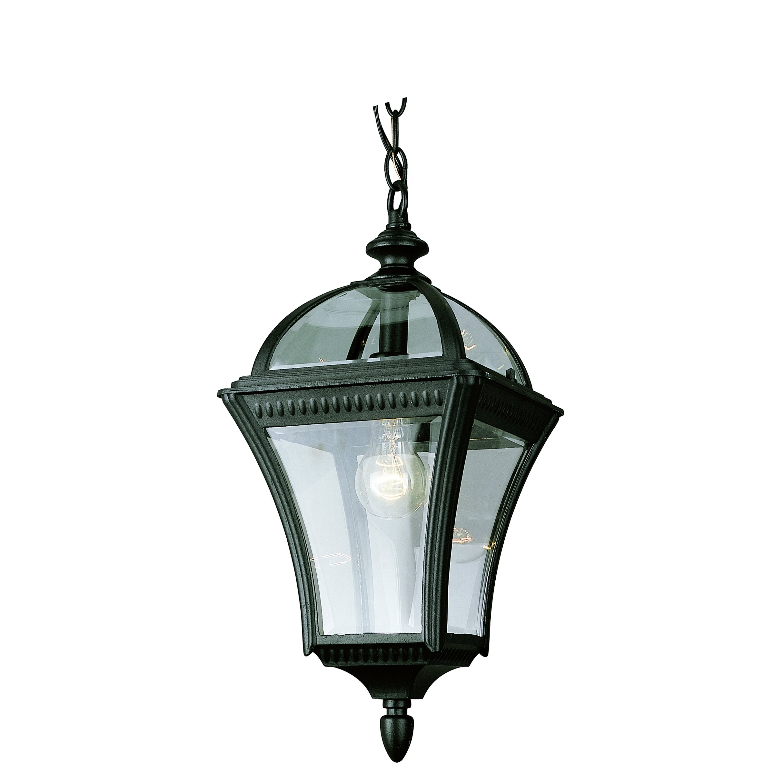 Wayfair Outdoor Hanging Lights: TransGlobe Lighting 1 Light Outdoor Hanging Lantern