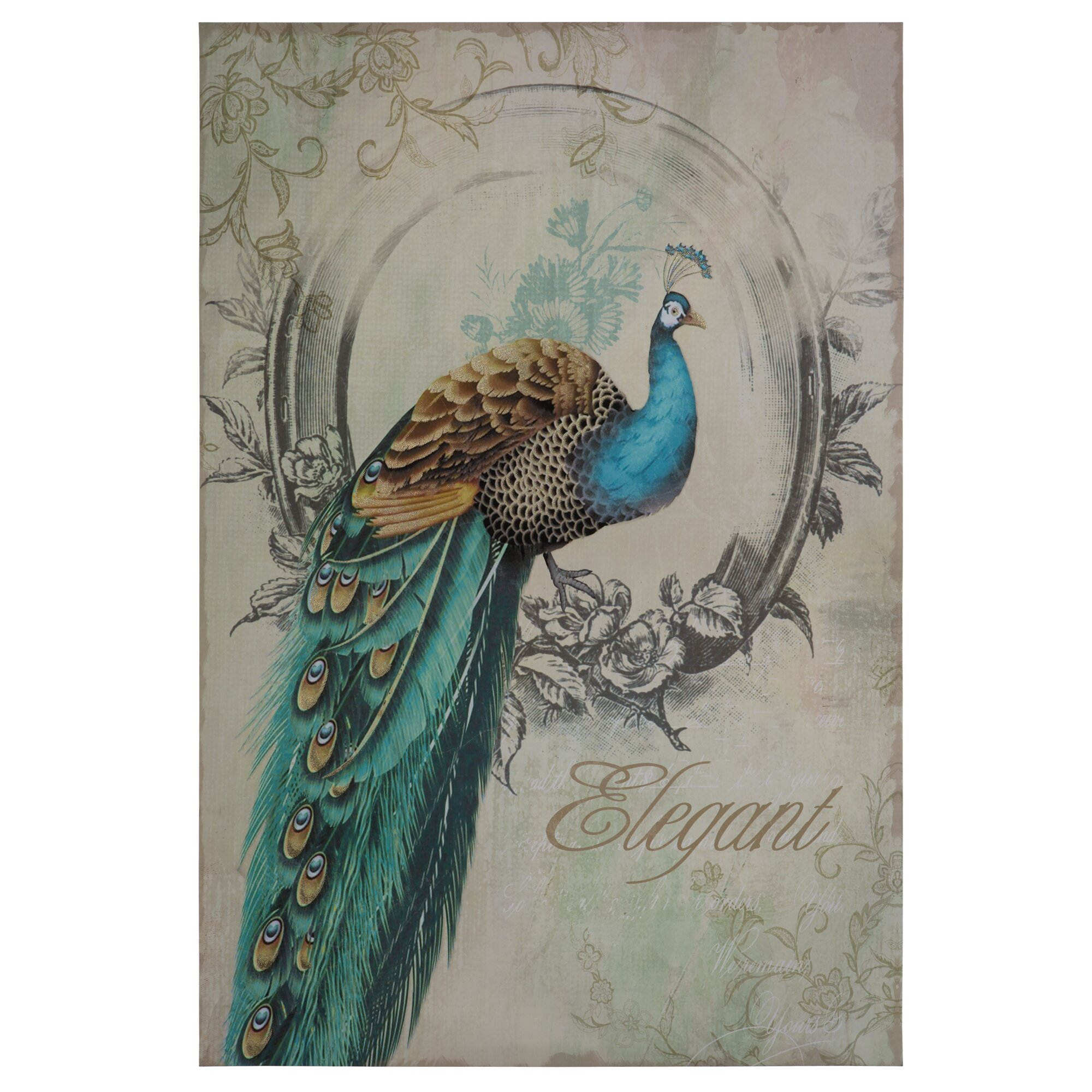 Yosemite Home Decor Peacock Poise I Graphic Art On Wrapped Canvas Revie
