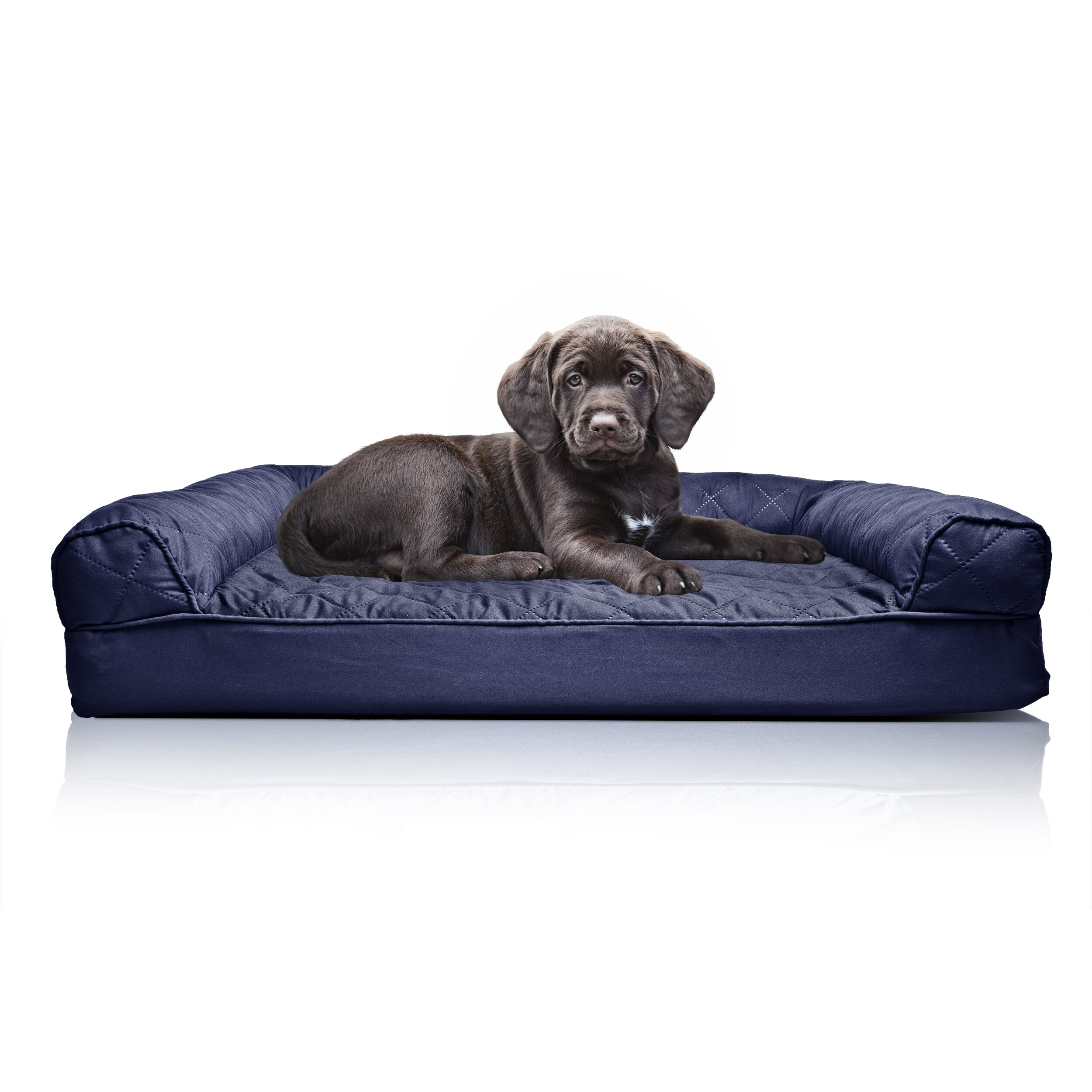 Zoey Tails Quilted Orthopedic Sofa Style Dog Bed Reviews Wayfair