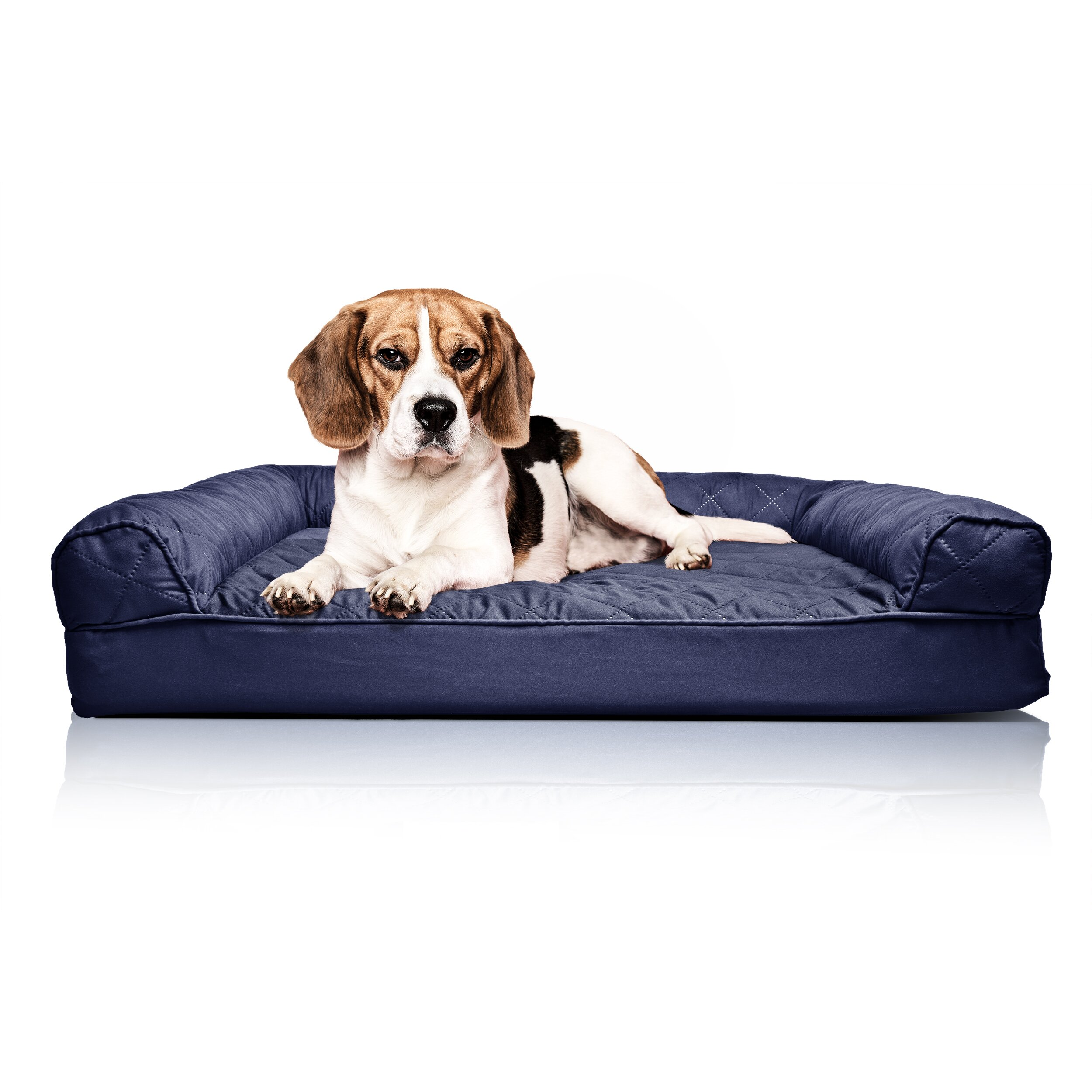 zoey tails quilted orthopedic sofa style dog bed reviews. Black Bedroom Furniture Sets. Home Design Ideas