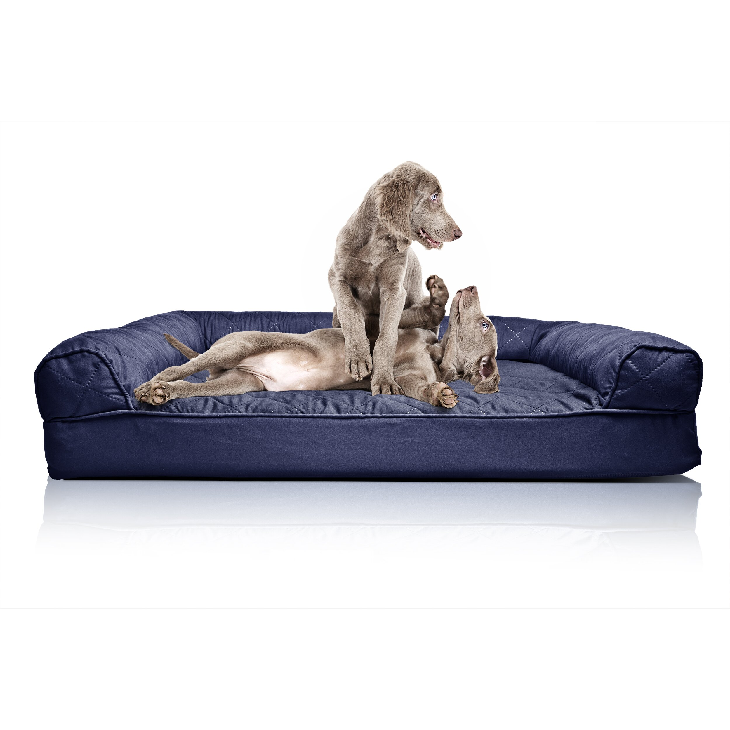 zoey tails quilted orthopedic sofa style dog bed reviews