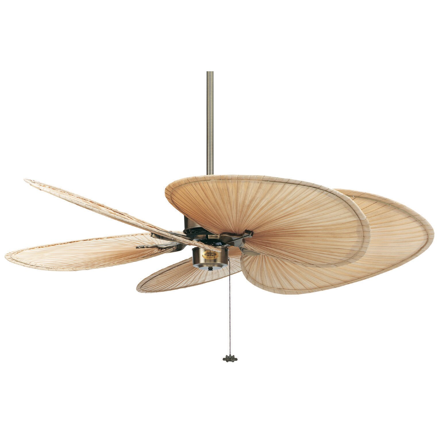 "Ceiling Fan Light Kit Fan Tropical Outdoor Fans With: Fanimation 52"" Islander 5 Palm Blade Ceiling Fan & Reviews"