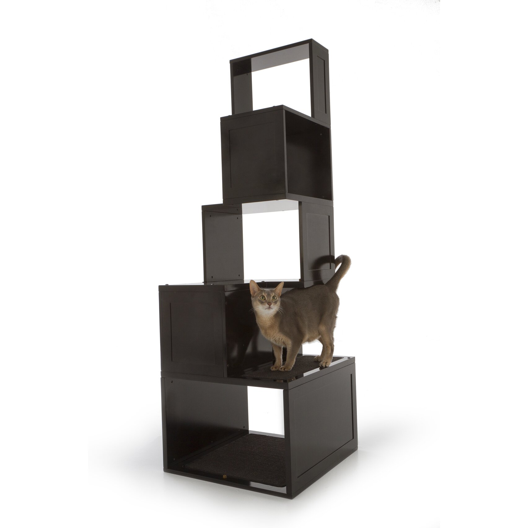 Designer Pet Products The Sebastian 65 Modern Cat Tree Interiors Inside Ideas Interiors design about Everything [magnanprojects.com]