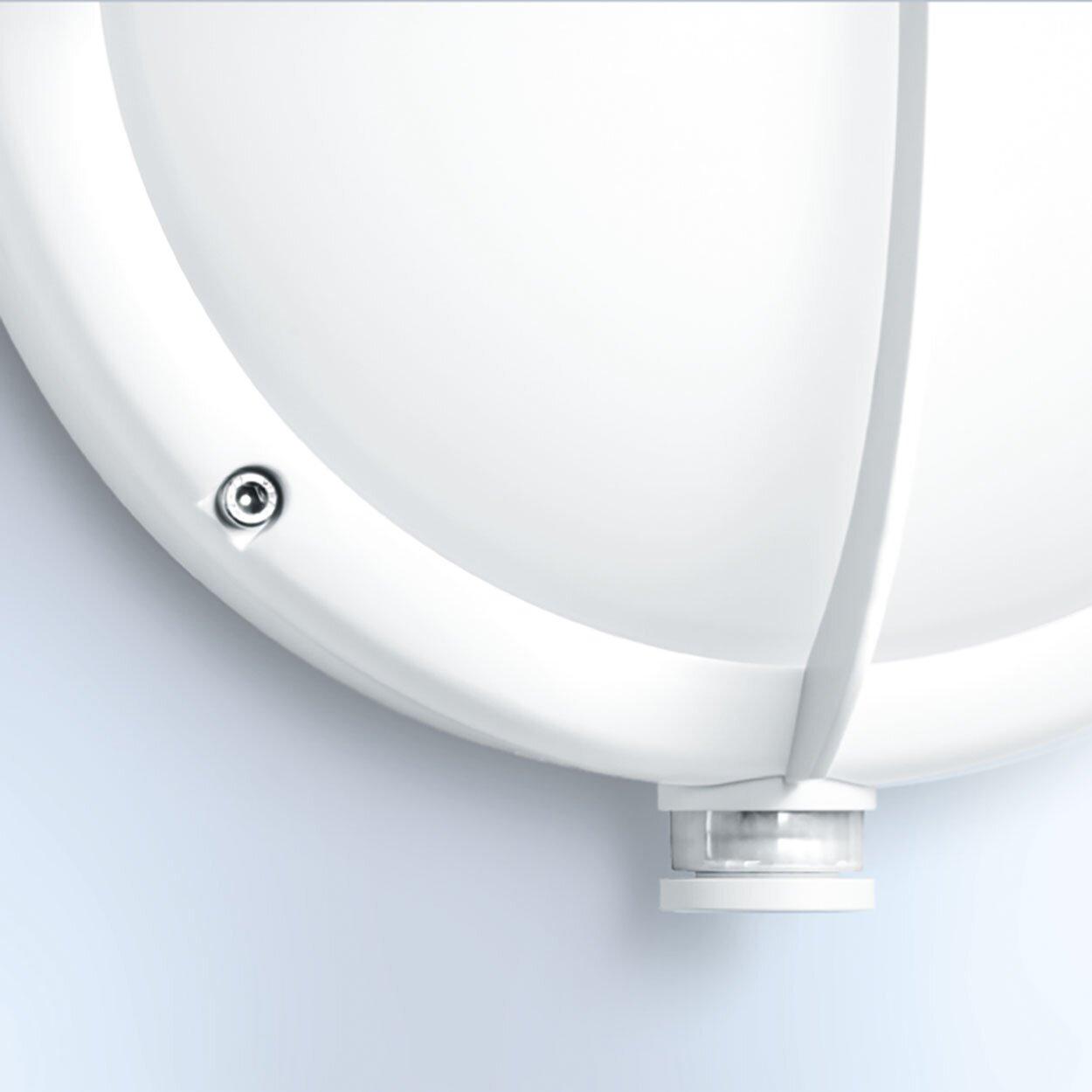 Steinel 1 Light Outdoor Bulkhead Light & Reviews Wayfair UK