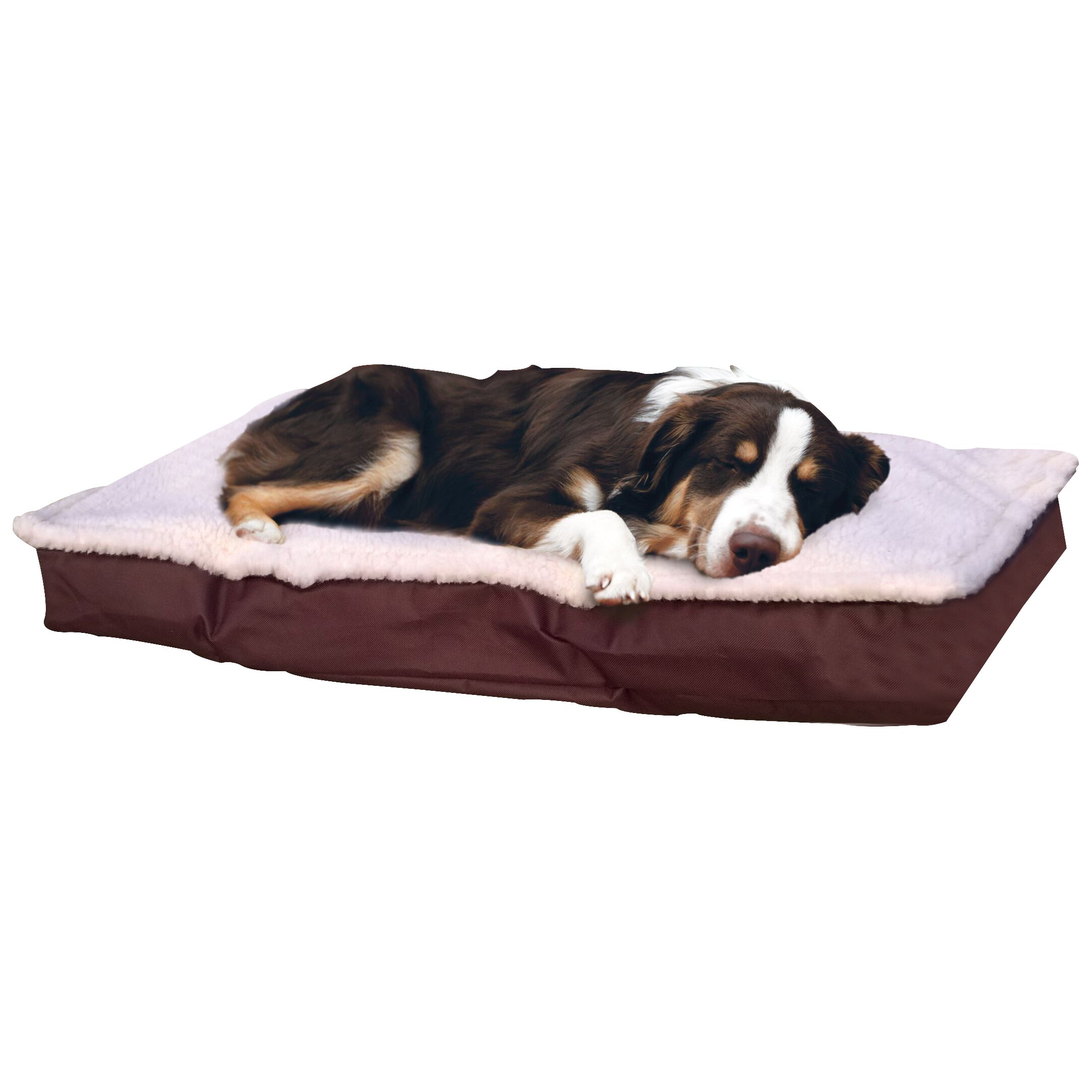 Dog Bed With Removable Pillow