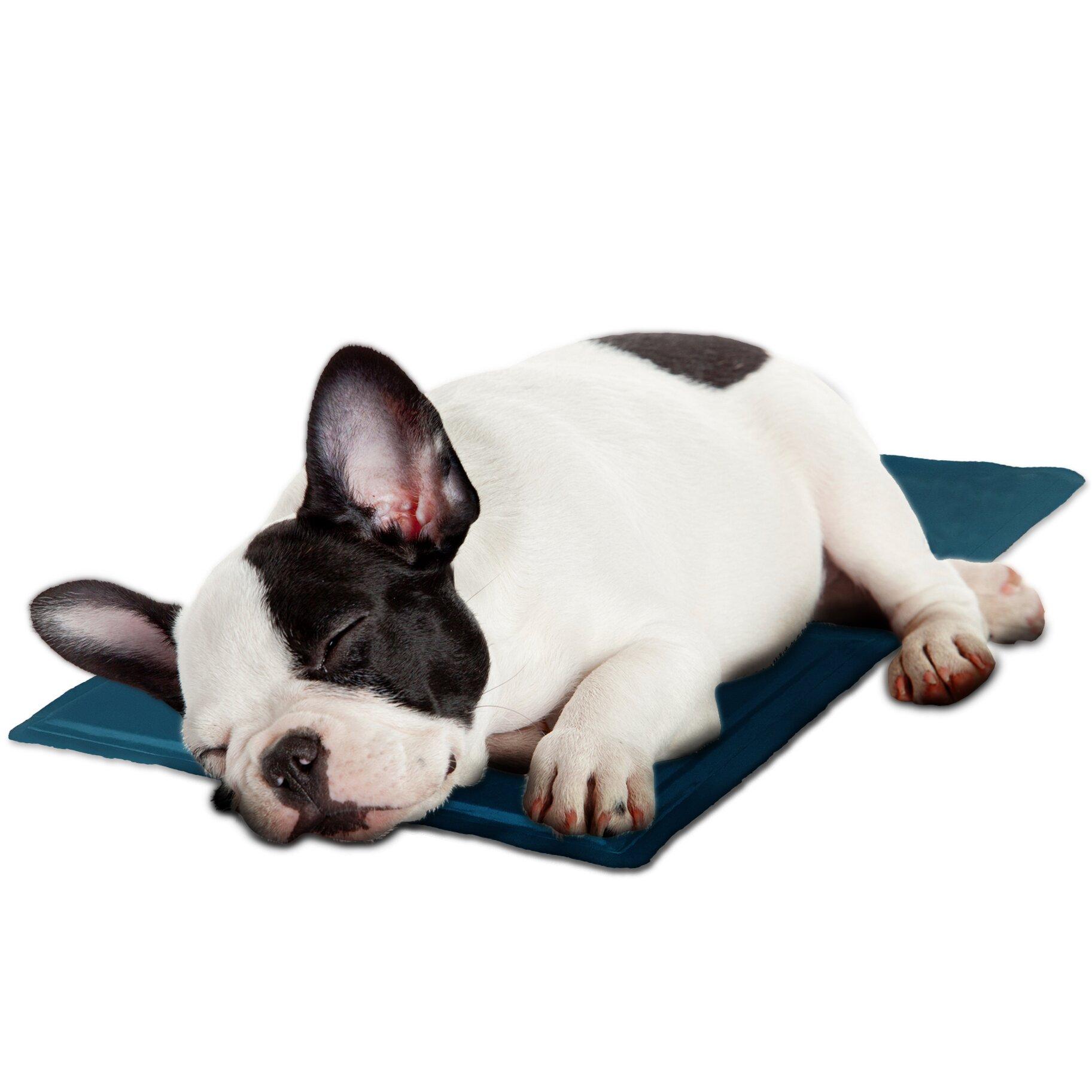Furhaven Pupicicle Dog Cooling Mat Amp Reviews Wayfair