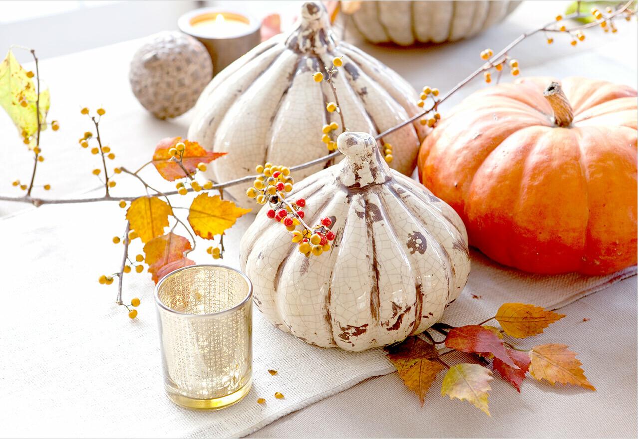 Haute harvest thanksgiving decor sale allmodern - Thanksgiving decorations on sale ...